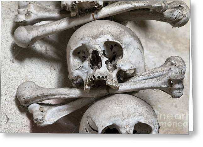 Repository Greeting Cards - Sedlec Ossuary - Charnel-house Greeting Card by Michal Boubin