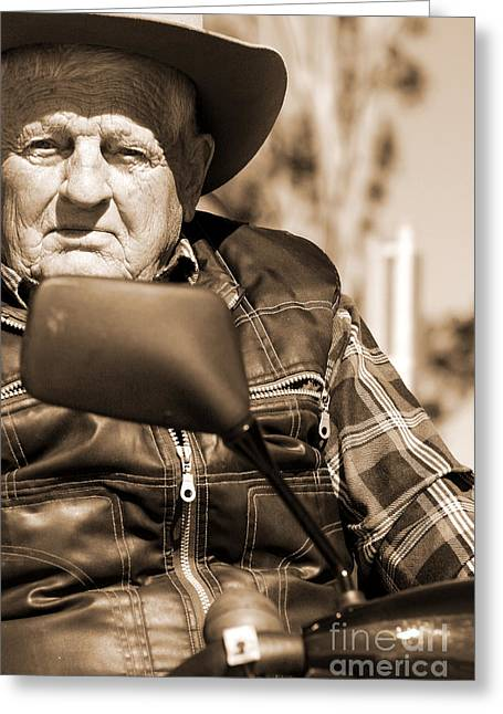 Senior Stare Greeting Card by Jorgo Photography - Wall Art Gallery