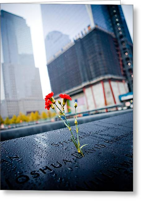 Terrorism Greeting Cards - September 11 Memorial New York USA Greeting Card by Anna Bryukhanova