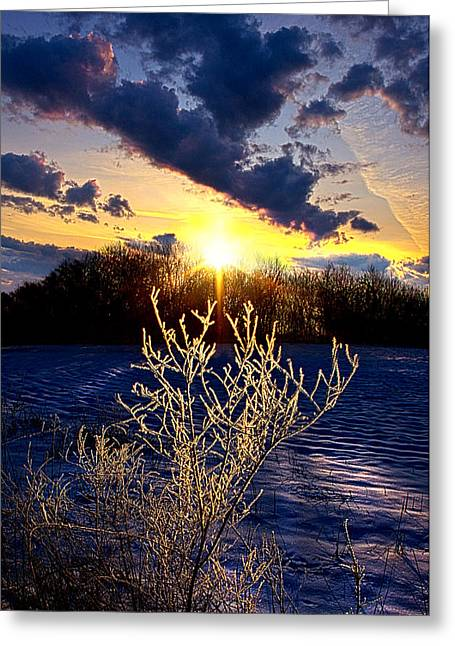 Geographic Greeting Cards - Serendipity Greeting Card by Phil Koch