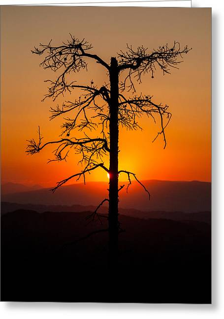 End Of Day Greeting Cards - Serenity Greeting Card by Davorin Mance