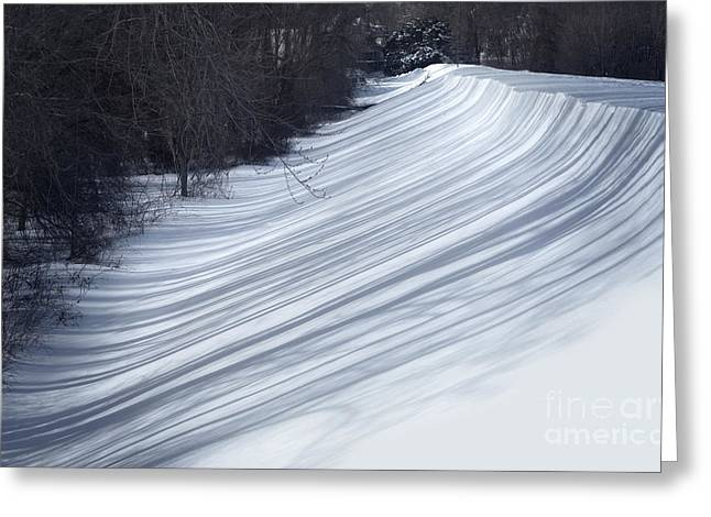 Snowy Woods Greeting Cards - Shadows   Greeting Card by HD Connelly