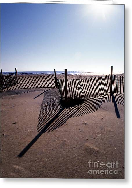 Surf Photos Art Greeting Cards - Shadows Greeting Card by Skip Willits
