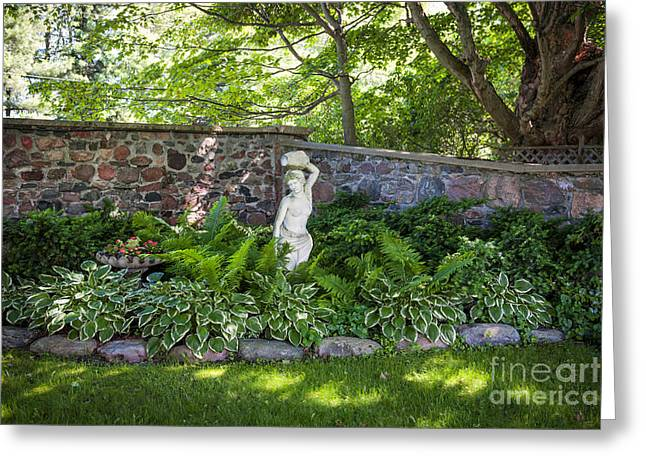 Various Greeting Cards - Shady perennial garden Greeting Card by Elena Elisseeva
