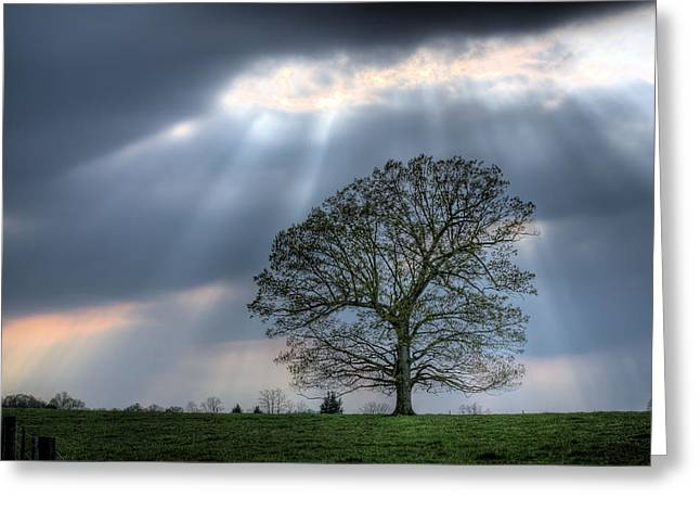 Shining Down Greeting Card by JC Findley