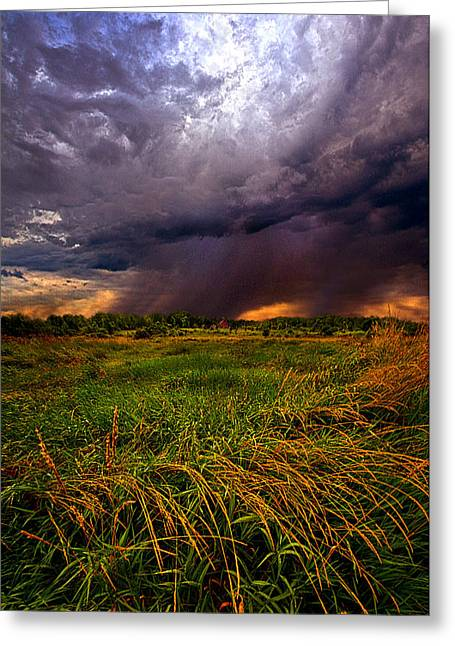 Shadows Greeting Cards - SHowers Greeting Card by Phil Koch
