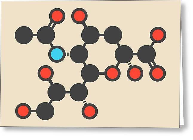 Sialic Acid Molecule Greeting Card by Molekuul