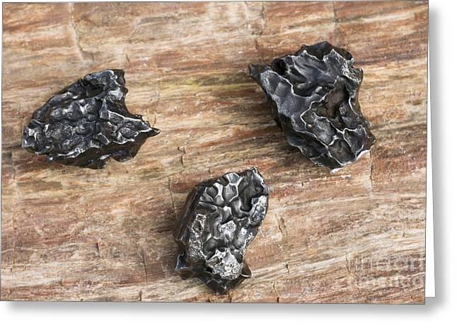 Reform Greeting Cards - Sikhote-alin Meteorite Fragments Greeting Card by Dirk Wiersma