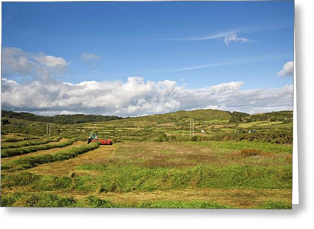 Silage Making,near Bantry,county Cork Greeting Card by Panoramic Images