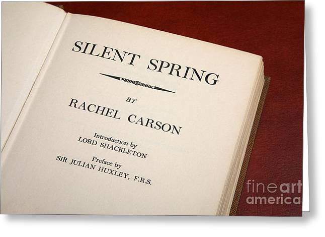 Rachel Carson Greeting Cards - Silent Spring Greeting Card by Victor De Schwanberg