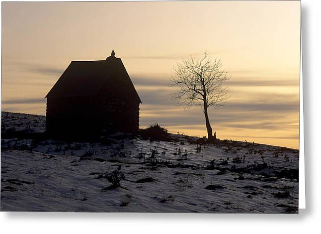 Bare Tree Photographs Greeting Cards - Silhouette of a farm and a tree. Cezallier. Auvergne. France Greeting Card by Bernard Jaubert