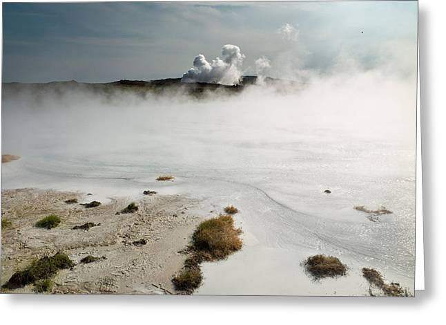 Landforms Greeting Cards - Silica Deposits In Water By The Greeting Card by Panoramic Images