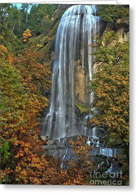 Silver Falls Greeting Cards - Silver Falls Through The Trees Greeting Card by Adam Jewell