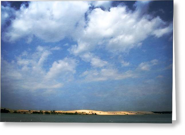 Beach Vista Greeting Cards - Silver Lake Sand Dunes Greeting Card by Michelle Calkins