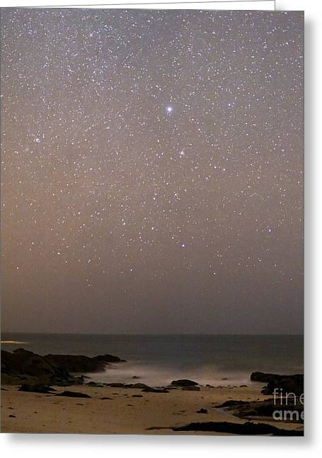 Sirius Greeting Cards - Sirius In Canis Major Over A Beach Greeting Card by Laurent Laveder