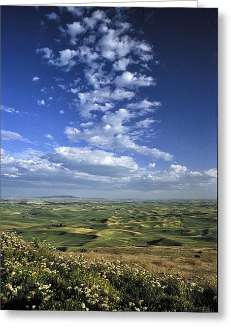July Greeting Cards - Sky from Steptoe Greeting Card by Latah Trail Foundation