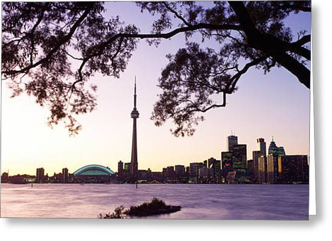 Trees Reflecting In Water Greeting Cards - Skyline Cn Tower Skydome Toronto Greeting Card by Panoramic Images