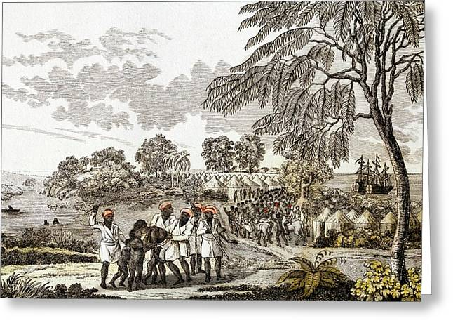 Slave Trade In Africa Greeting Card by Paul D Stewart
