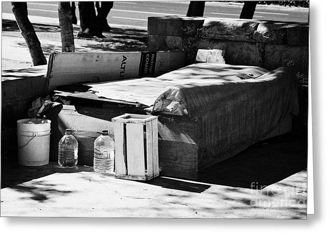Cardboard Greeting Cards - sleeping rough on the streets of affluent providencia Santiago Chile Greeting Card by Joe Fox