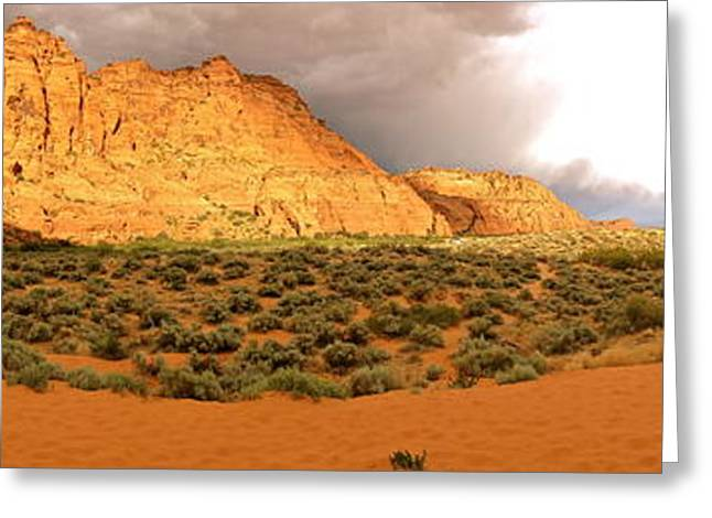 Southern Utah Greeting Cards - Snow Canyon Dunes Greeting Card by Douglas ODonnell