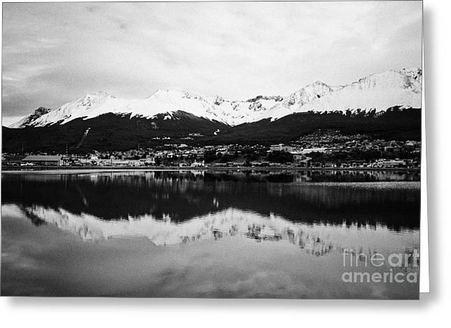 Snow-covered Landscape Greeting Cards - snow covered patagonian mountains from across the bahia encerrada enclosed bay Ushuaia Argentina Greeting Card by Joe Fox