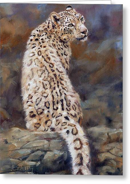 Foothill Greeting Cards - Snow Leopard Greeting Card by David Stribbling