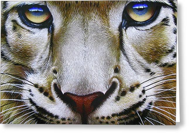 Asian Wildlife Greeting Cards - Snow Leopard Greeting Card by Jurek Zamoyski