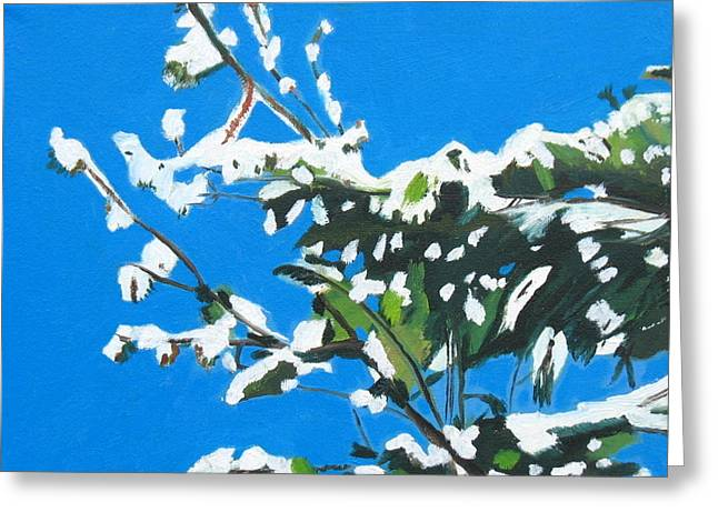 Pine Needles Paintings Greeting Cards - Snow Pine Greeting Card by Dave Holmander-Bradford
