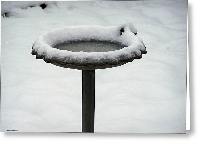 Snow Reliefs Greeting Cards - Snow Ring Around Birthbath Greeting Card by Suhas Tavkar