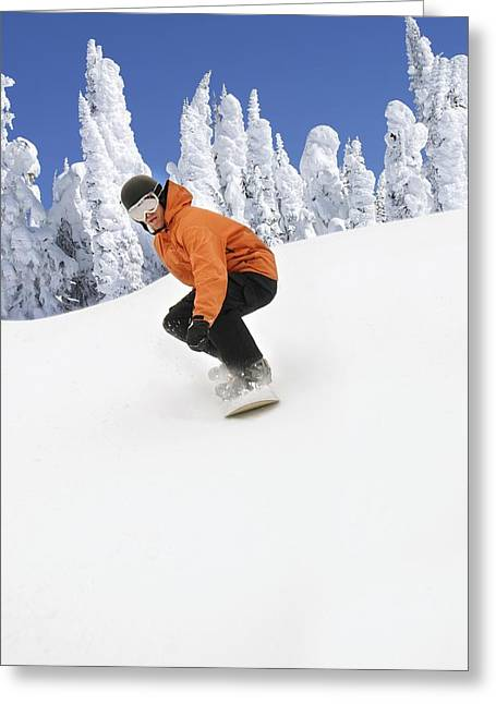 18-19 Years Greeting Cards - Snowboarder Going Down Snowy Hill Greeting Card by Leah Hammond