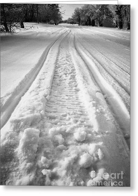 Snowmobile Greeting Cards - snowmobile tracks in snow in rural Forget Saskatchewan Canada Greeting Card by Joe Fox