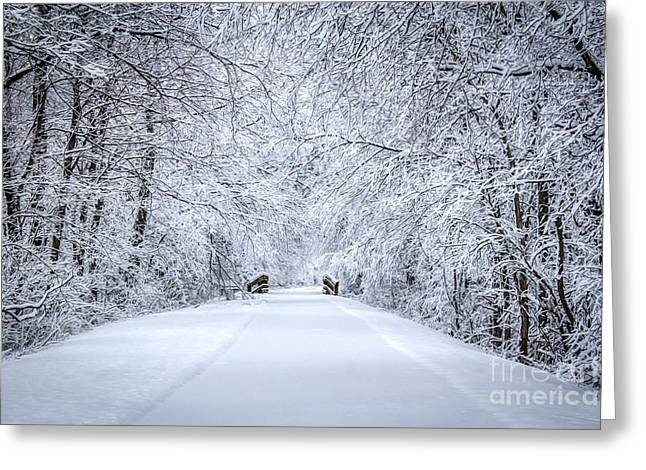 Snow On Trees Greeting Cards - Snowy Path - Paintography Greeting Card by Dawn M Smith