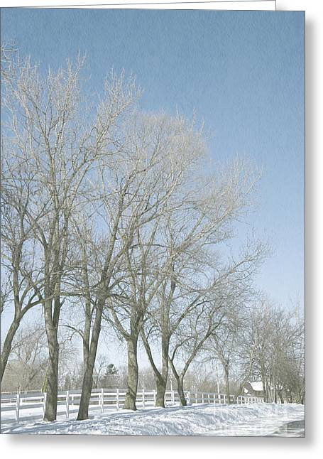 Snowy Day Greeting Cards - Snowy Rural Road Greeting Card by Birgit Tyrrell