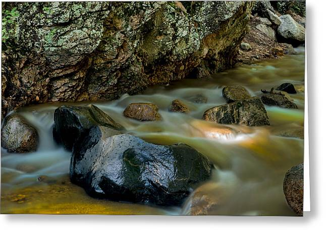 Brook Photographs Greeting Cards - Softly Flowing Brook Greeting Card by Tim Reaves