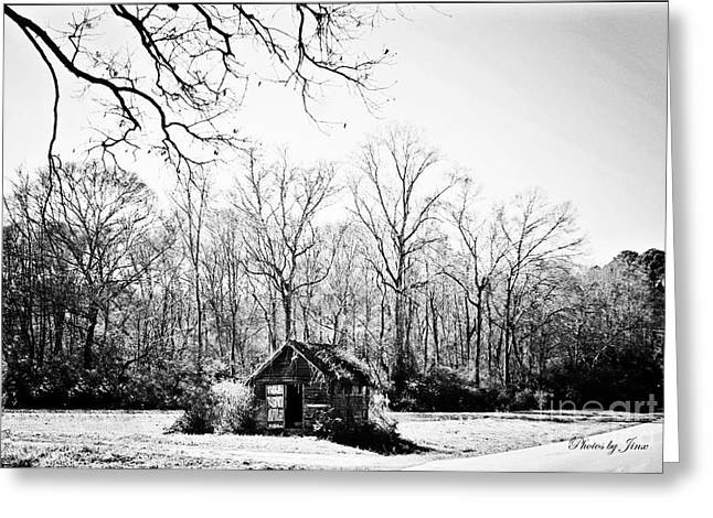 Old Home Place Digital Greeting Cards - Solitude  Greeting Card by Jinx Farmer