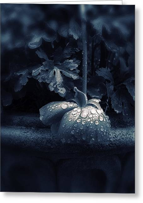 Sorrow Digital Art Greeting Cards - Sorrow Greeting Card by Jessica Jenney