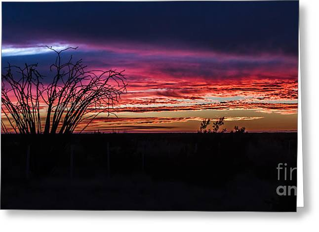 Haybale Greeting Cards - Southwest Sunset Greeting Card by Robert Bales