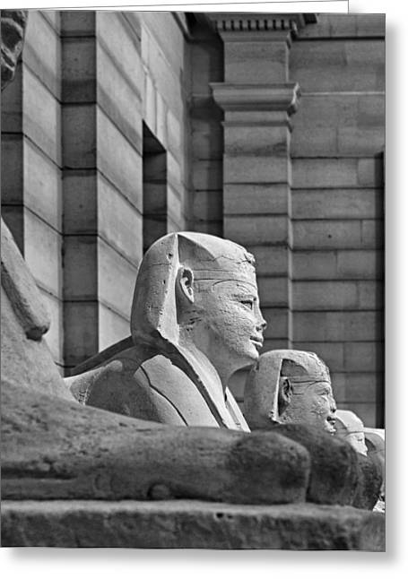Pharaoh Greeting Cards - Sphinxes of the Serapeum of Saqqarah in Egypt Greeting Card by Mountain Dreams