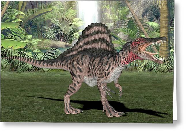 Spinosaurus Dinosaur Greeting Card by Friedrich Saurer