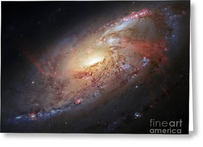 M106 Greeting Cards - Spiral Galaxy M106, Hubble Image Greeting Card by Robert Gendler