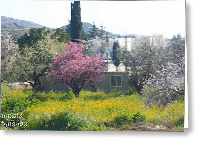 Star Valley Greeting Cards - Spring and Almond Flowers Greeting Card by Augusta Stylianou