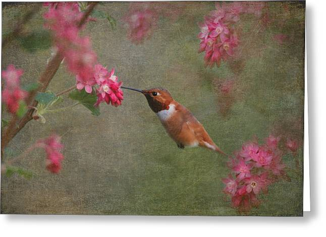Spring Delight Greeting Card by Angie Vogel