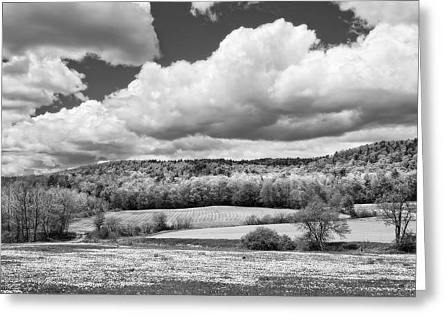 Maine Farms Digital Greeting Cards - Spring Farm Landscape with Dandelions In Maine Greeting Card by Keith Webber Jr