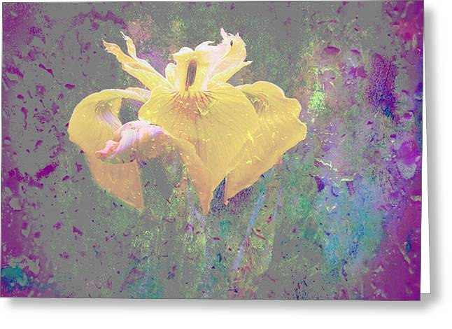 Spring Fever Greeting Cards - Spring Fever Greeting Card by Beverly Guilliams