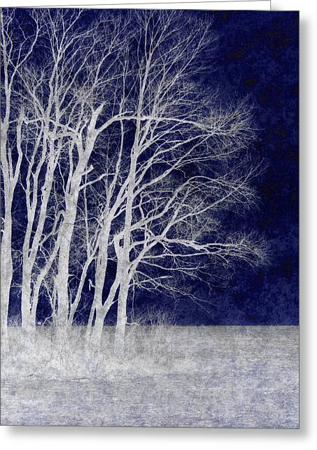 Spring Frost Greeting Card by Luke Moore