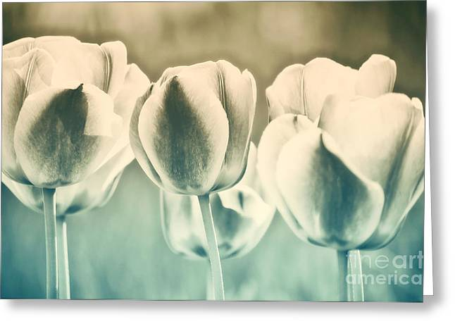 Flower Blossom Photographs Greeting Cards - Spring Inspiration Greeting Card by Angela Doelling AD DESIGN Photo and PhotoArt