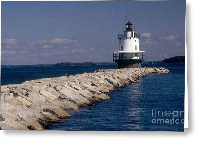 Ledge Photographs Greeting Cards - Spring Point Ledge Lighthouse Greeting Card by Bruce Roberts