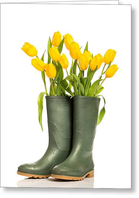 Boots Greeting Cards - Spring Tulips Greeting Card by Amanda And Christopher Elwell