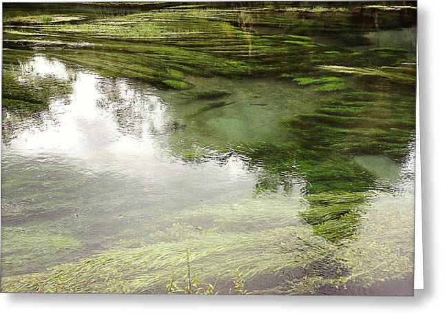 Natural River Greeting Cards - Spring water Greeting Card by Les Cunliffe