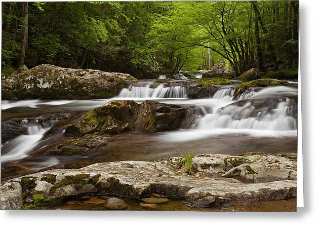 Springtime Cascades In The Smokies Greeting Card by Andrew Soundarajan